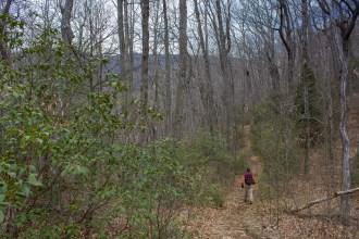 Trail starts down