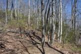 Squirrel Gap trailhead