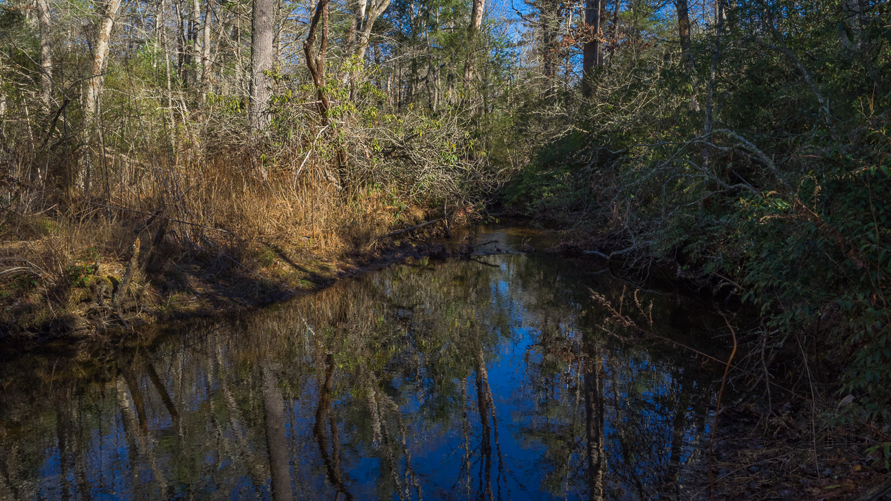 Meanderthals pink beds loop pisgah national forest solutioingenieria Choice Image