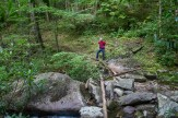 Forney Creek crossing