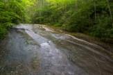 Lower Forney Creek Cascade