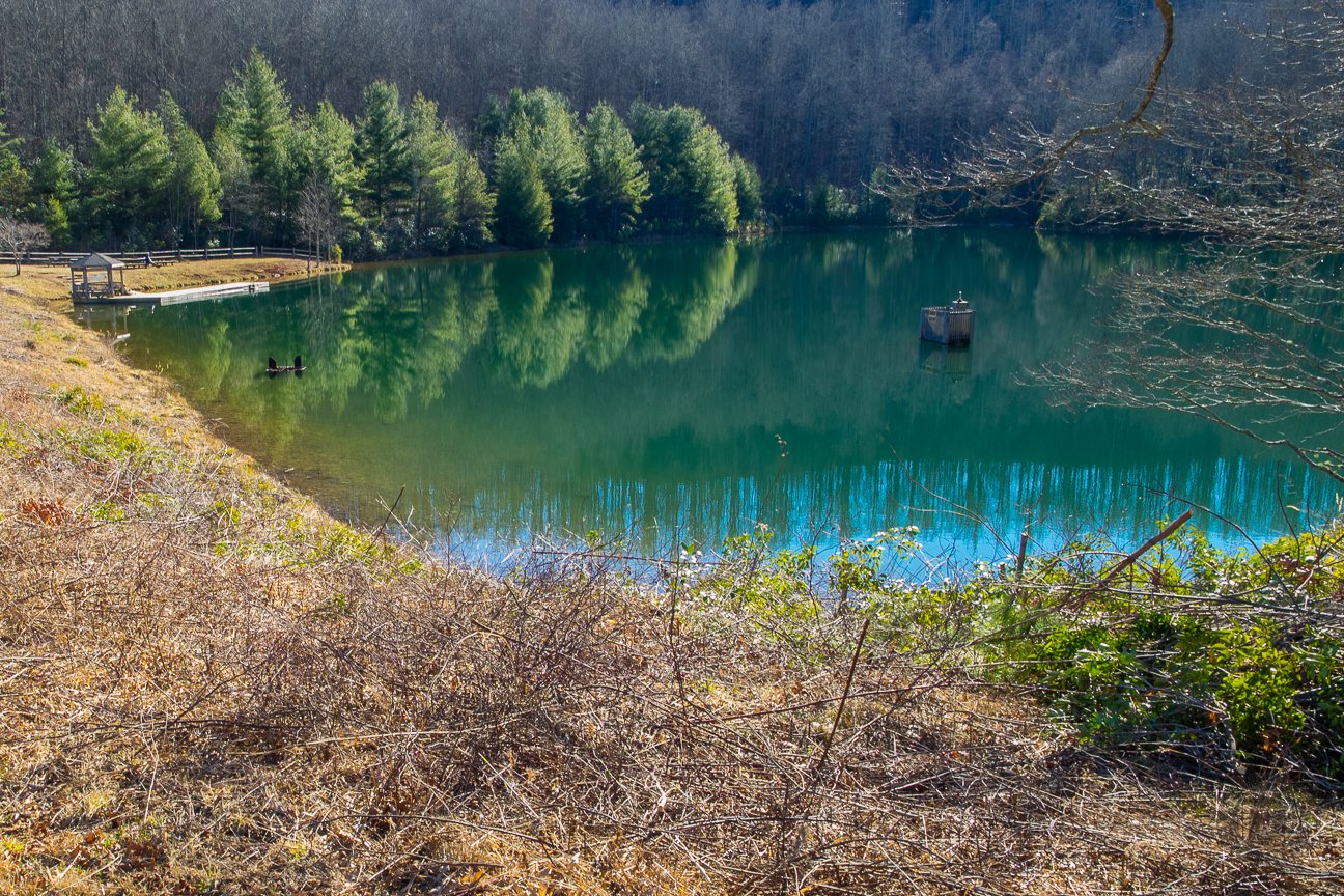 Meanderthals Reasonover Creek Trail To Lake Julia And