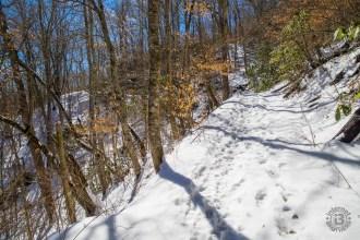 Snow on Pinnacle Trail