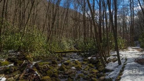 Snowy creekside trail