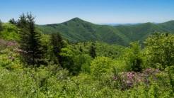 Greybeard Mountain