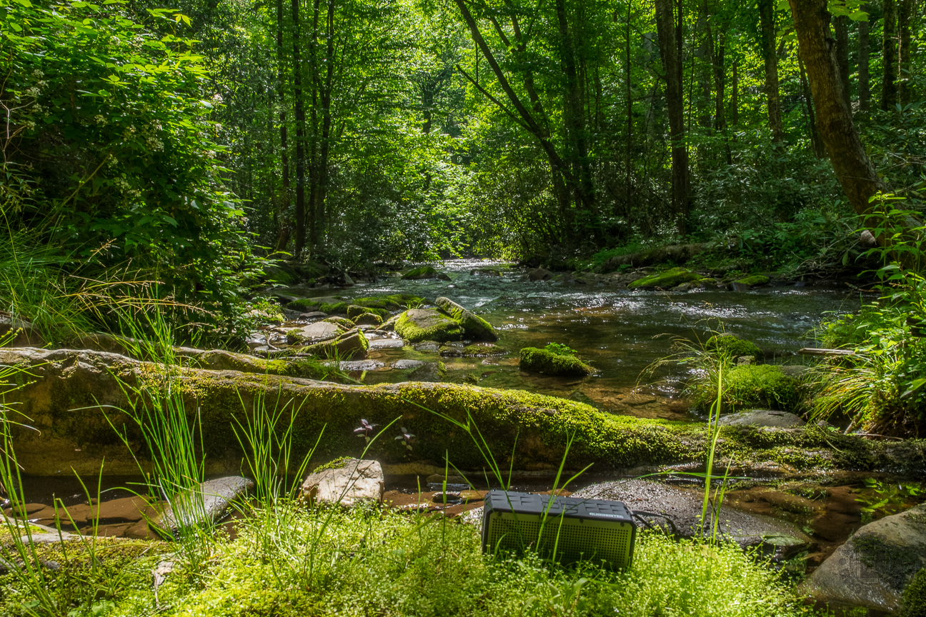 The RoqBloq rests comfortably on a bed of moss at Caldwell Fork.