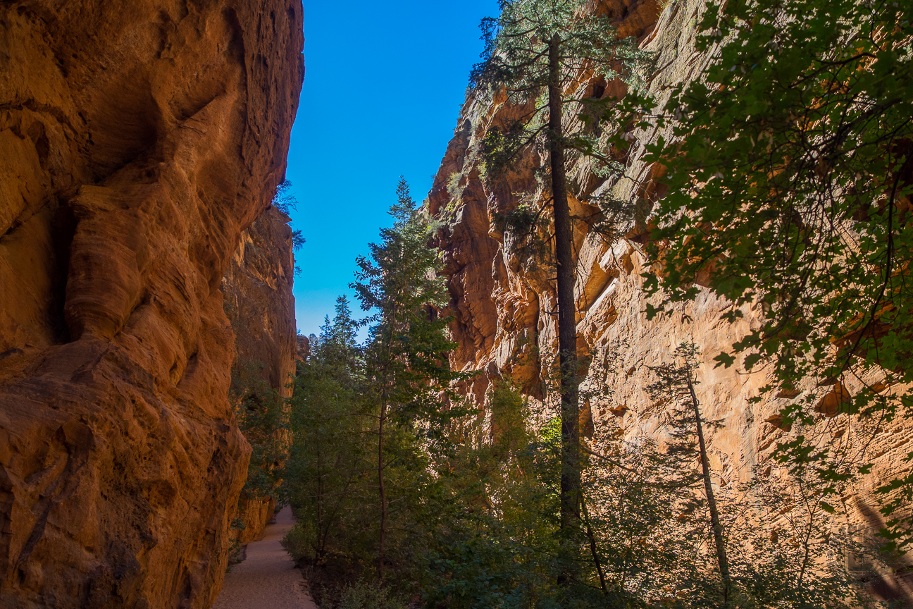 Meanderthals Angels Landing And West Rim Trail Zion