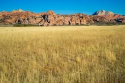 Acres of grassland