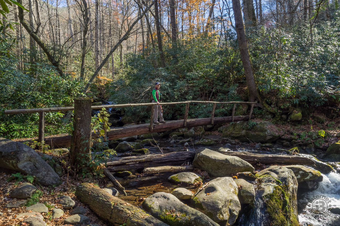 My regular hiking pal Ken poses in the sunlight on the Indian Camp Creek footlog. Ken is one of the original Meanderthals and has been hiking with me even longer than I've been putting trail reports on this web site.