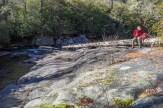 Log at Elbow Falls
