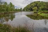 Pond at Morse Park