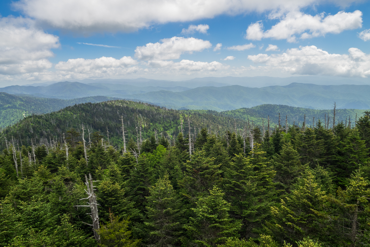 The observation tower on the summit of Clingmans Dome offers spectacular 360° views of the Smokies and beyond. On clear days views expand over a 100 miles. Clouds, precipitation, and cold temperatures are common at Clingmans Dome. Temperatures at the dome can be 10-20 degrees cooler than in the surrounding lowlands. Dress in layers and be sure to bring a jacket, even in summer. This is the view to the east from the observation tower.