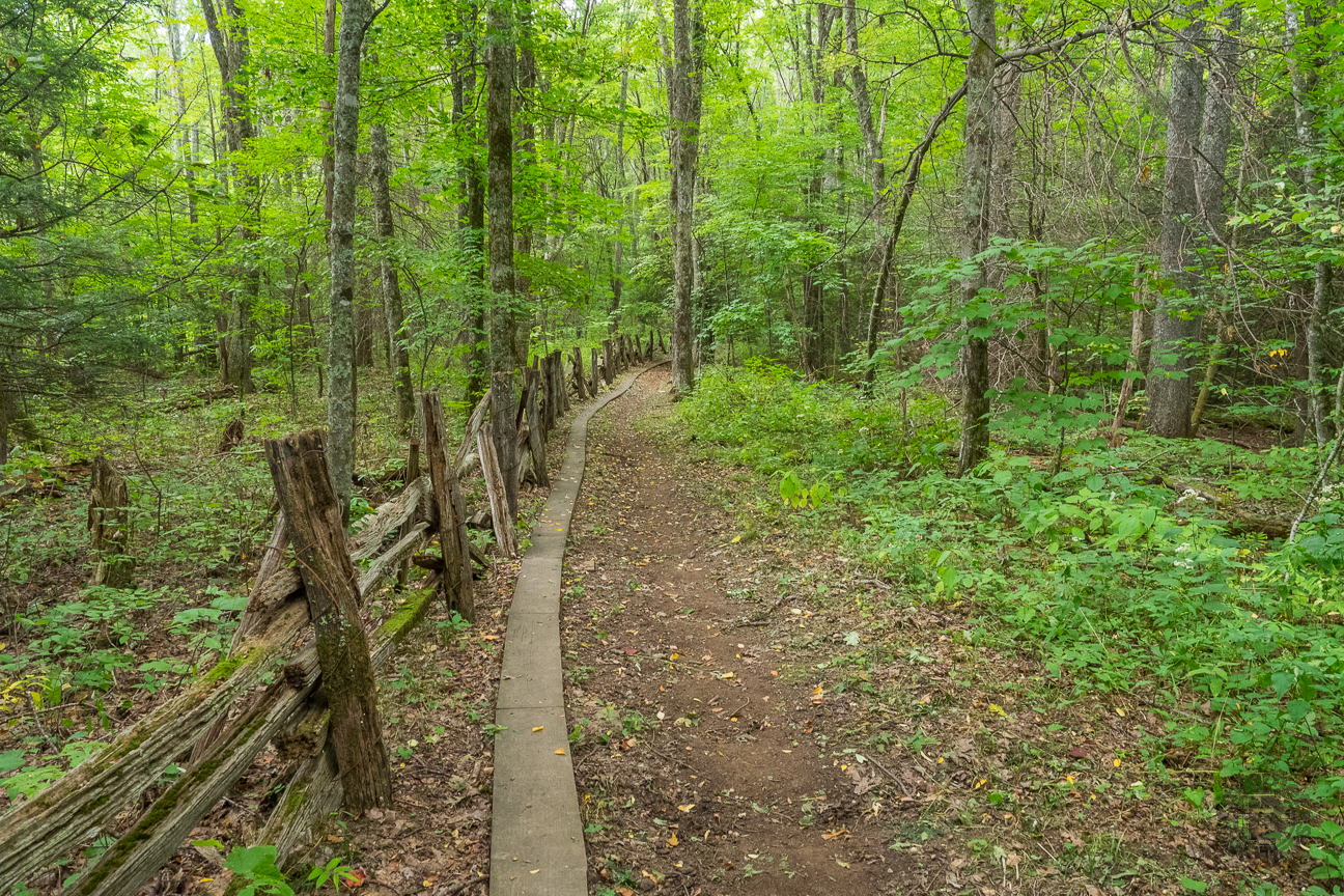 meanderthals a day on the cataloochee divide a photo essay original locust split rail fence that denotes the eastern national park boundary it passes through a mostly deciduous forest that is beautiful to look