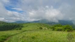Appalachian Trail on Little Hump
