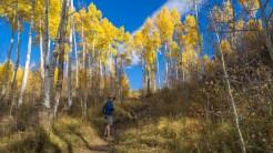 Dave on Spraddle Creek Trail