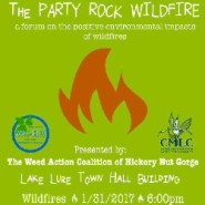 Impacts of the Party Rock Fire on Hickory Nut Gorge
