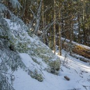Things to consider before hiking in deep snow