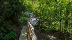 Approaching Abrams Falls
