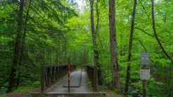 Iron bridge at trailhead