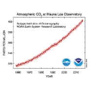 Forests and oceans seem to be absorbing a lot less CO2