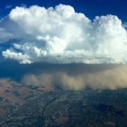 Dust Bowl-ification of U.S. Southwest leads to 8-fold jump in Valley Fever cases