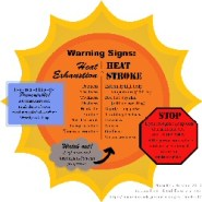 Stages of heat illness: When you need to go to the E.R.