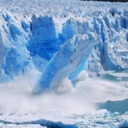 Glacial melt will wreck ecosystems