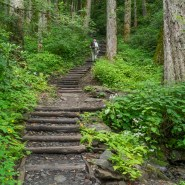 Great Smoky Mountains National Park to Reopen Chimney Tops Trail October 6