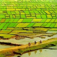 How climate change is triggering a migrant crisis in Vietnam
