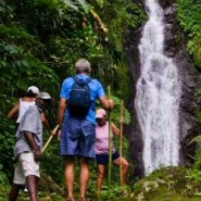 Hiking across the greenest island in the Caribbean