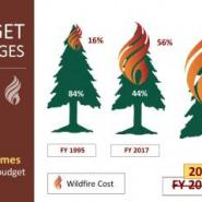 Save our national forests with a simple fire funding fix