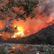 Megafires, Wildland Fires, and Prescribed Burns