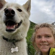 Husky saves deaf hiker, and dozens of others, on Alaskan trail