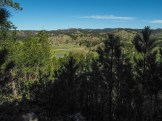 Looking into the Black Hills