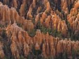 Hoodoos below Bryce Point