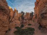 In the shadows of hoodoos