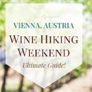 Wine Hiking and Vineyard Hopping In Vienna