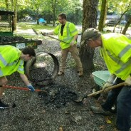 Fall into Volunteerism with Smokies Service Days