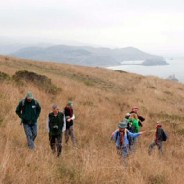 Sprawling Jenner Headlands Preserve on California's Sonoma Coast opening to public