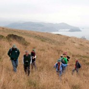 Sprawling Jenner Headlands Preserve on California's Sonoma Coast opening to public