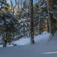 Some Basic Elements of Winter Hiking