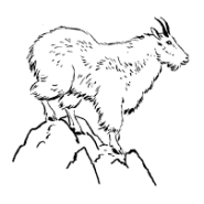 Mountain goat relocation is a high-flying balancing act in Olympic National Park