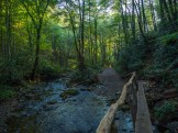 Crossing a footlog over Rough Fork in Cataloochee Valley