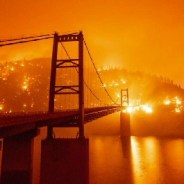 How apocalyptic this fire season is