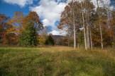 Camp Road field