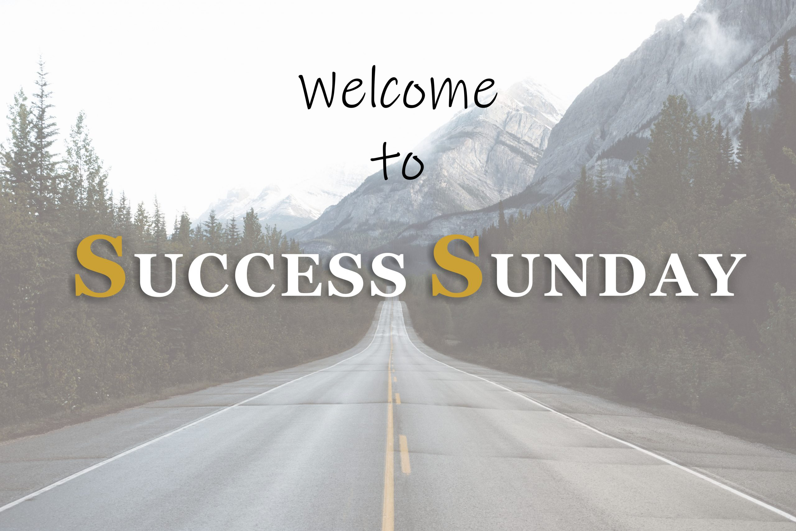 success-sunday-Til-Draper-internet-bull-report