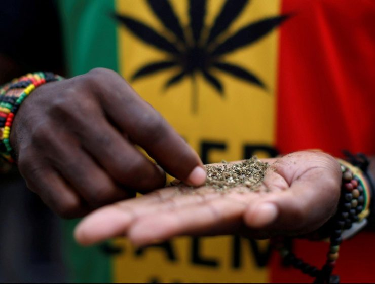 south-africa-sa-cannabis-dagga-cbd-internet-bull-report