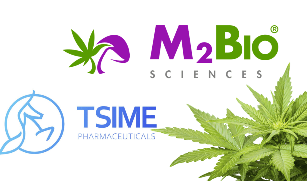 Tsime-pharmaceuticals-$wuhn-wuhan-general-group-m2bio-sciences-internet-bull-report