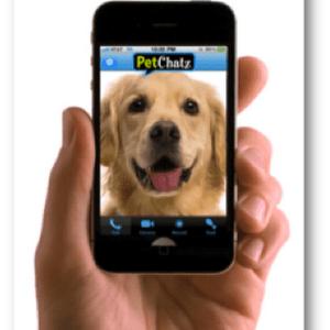 Petchatz comunica con tus mascotas