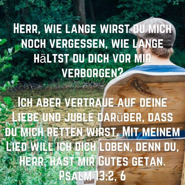 Bibelvers Psalm 13, 2+6 auf Bild mit Mann auf Bank